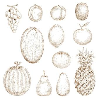 Frische birne und zitrone, orange und apfel, pflaume und traube, pfirsich und ananas