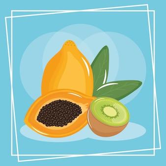 Frische exotische früchte der kiwi und der papaya