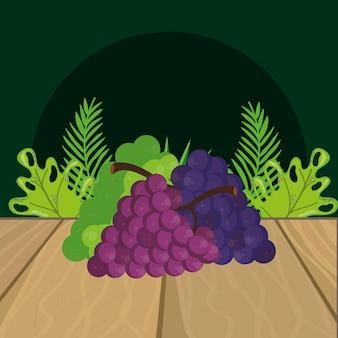 Frische fruchttrauben-karikatur