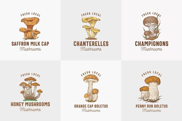Frische lokale pilze abstrakte zeichensymbole oder logoschablone