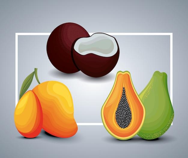 Frische mango mit papaya und kokosnuss