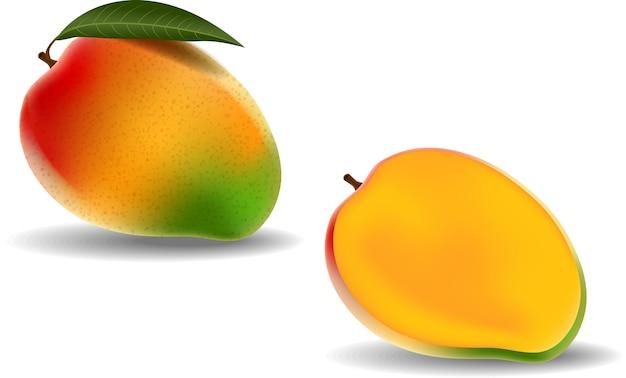Frische mangofrucht getrennt auf weißem hintergrund