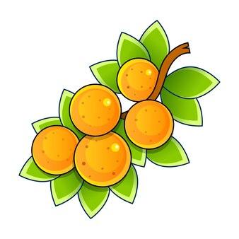 Frische reife orangen mit grüner blätterkarikaturartillustration