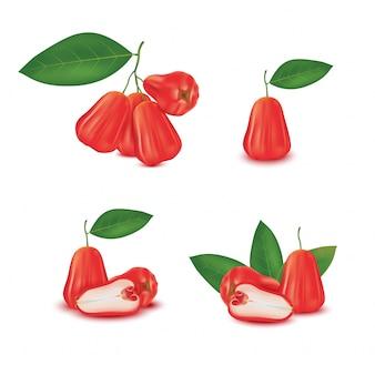 Frische rote rosenapfelfrucht (wachsapfel, syzygium samarangense) lokalisiert auf weißem hintergrund