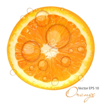 Frische saftige orange hintergrundvektorillustration
