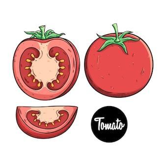 Frische tomaten obst mit farbigen skizze stil festgelegt