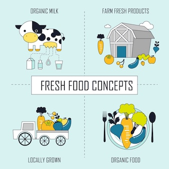 Frischekonzept: bio-milch-farmfrischprodukte-lokal angebaut-bio-lebensmittel im linienstil
