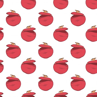 Frischer roher granatapfel.