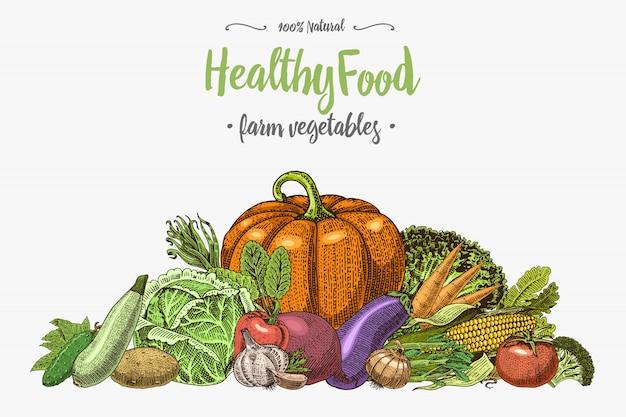 Frisches gemüse hintergrund mit platz für text, handgezeichnet oder graviert, vintage, retro aussehende pflanzen, vegetarisches und gesundes essen