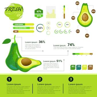 Frisches organisches infographics natürliches fruchtwachstum, landwirtschaft und landwirtschaft