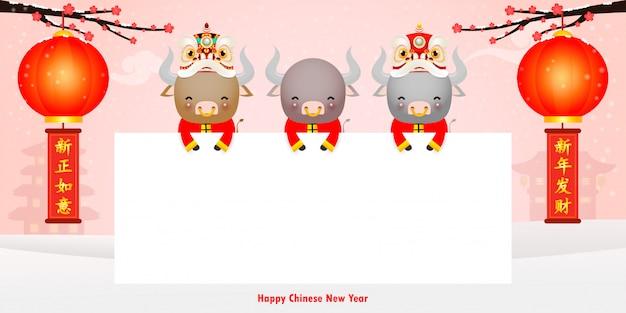 Frohes chinesisches neues jahr 2021 des ochsen-sternzeichenplakatentwurfs mit niedlicher kleiner kuh, die zeichen und löwentanz hält, das jahr der ochsengrußkartenfeiertage isoliert hintergrund, übersetzung: frohes neues jahr
