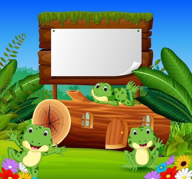 frosch bilder kostenlos  ausmalbilder und vorlagen