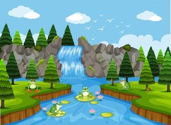 Frösche in der Wasserfall-Szene