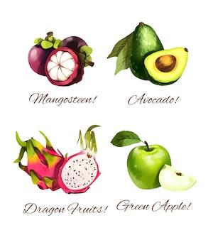 Früchte aquarellillustration