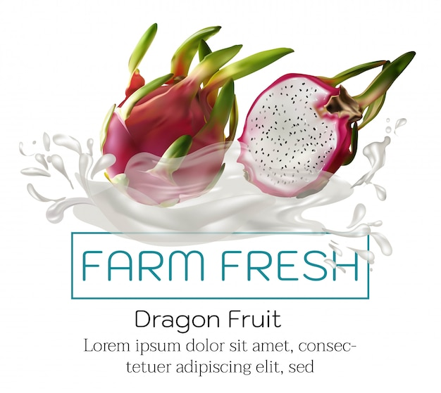 Früchte auf werbeplakat