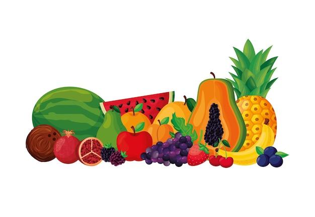 Früchte setzen vektor