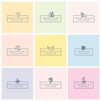 Früchte und beeren abstrakte zeichensymbole oder logoschablone