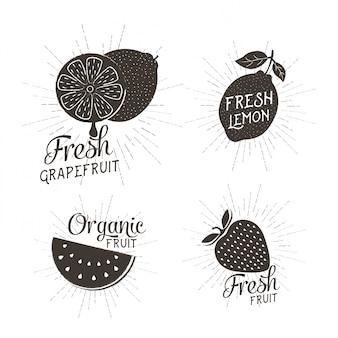Früchte vektor-design-set