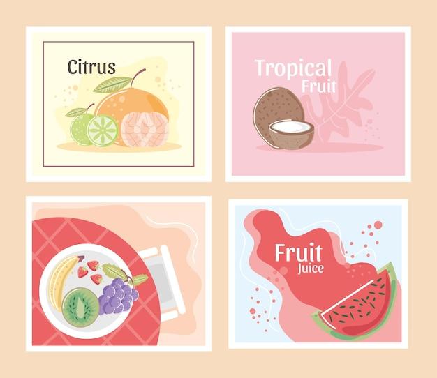 Früchte zitrusfrucht frisch saftig und tropische mandarine wassermelone kokosnuss illustration