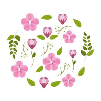 Frühling blühen symbolbild
