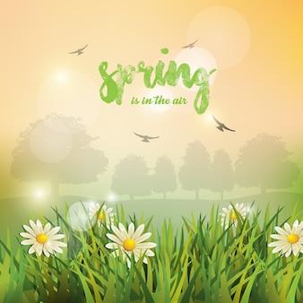 Frühling hintergrund.