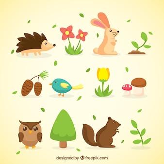 Frühling tiere und natur-sammlung