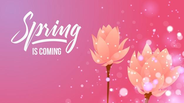 Frühling und blumenhintergrund