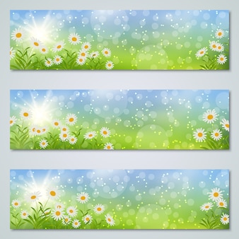 Frühling und sommer banner vorlagen sammlung