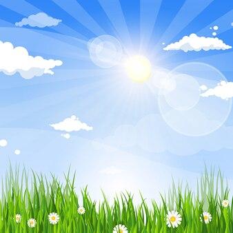 Frühlings-landschaftsgrünes gras-blauer himmel