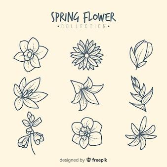 Frühlingsblumen-sammlung