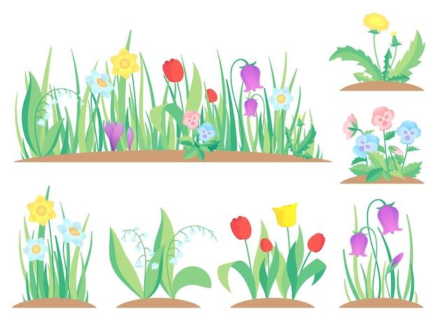 Frühlingsgartenblumen, frühe blume, bunte gartenpflanzen und flache gartenarbeit der blühenden pflanze