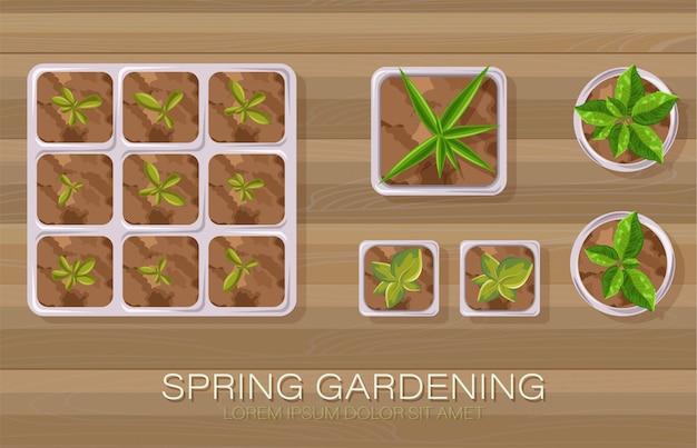 Frühlingsgartentopf mit blumen und teeblättern, die wachsen