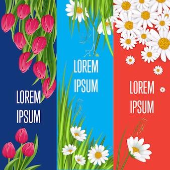 Frühlingsgrußkartensatz mit blühender tulpe
