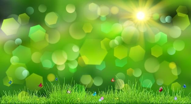 Frühlingshintergrund in grünen farben mit himmel, sonne, gras, blumen und schmetterlingen