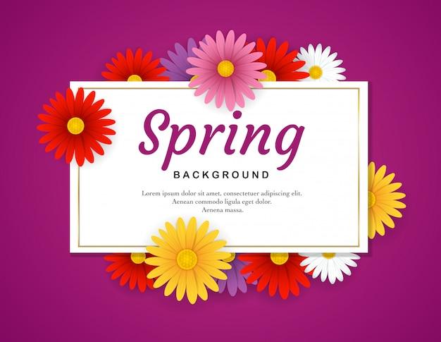 Frühlingshintergrund mit bunten blumen auf purpurrotem hintergrund
