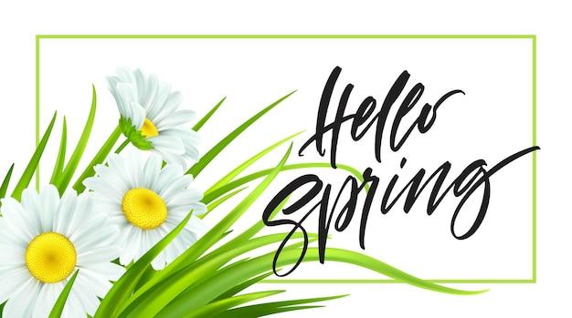 Frühlingshintergrund mit gänseblümchen und frischem grünem gras. hallo frühlingshandschrift schriftzug. illustration Premium Vektoren