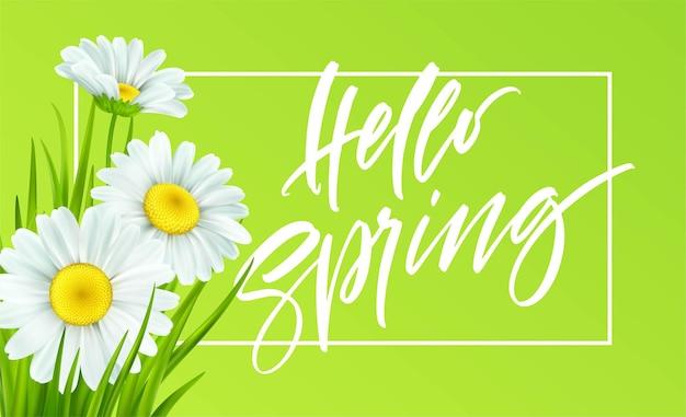 Frühlingshintergrund mit gänseblümchen und frischem grünem gras. hallo frühlingshandschrift schriftzug. illustration