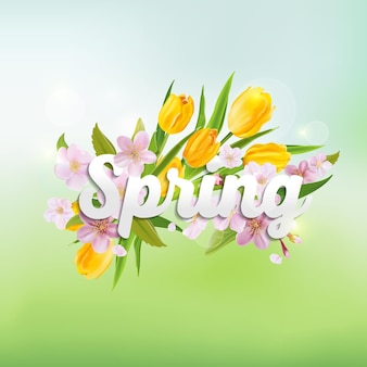 Frühlingshintergrund mit tulpen und kirschbaumblumen