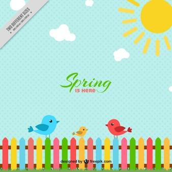 Frühlingshintergrund mit vögeln und zaun