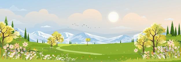 Frühlingslandschaft im dorf mit grüner wiese und sonnenuntergangvektorkarikatur sommer ländliches ackerland