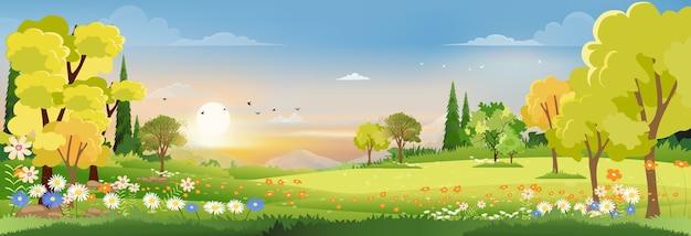 Frühlingslandschaft im dorf mit sonnenuntergang