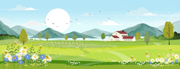 Frühlingslandschaft mit bauernhoffeld, wilde blumen, blauer himmel mit der sonne.