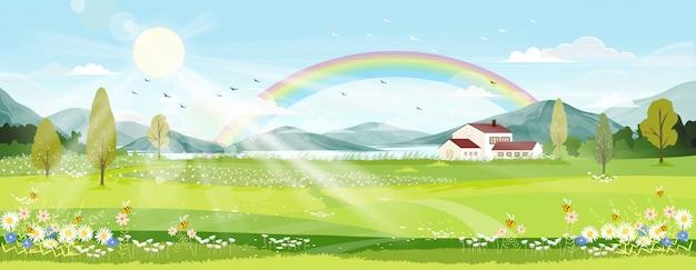 Frühlingslandschaft mit bauernhoffeld, wilden blumen, blauem himmel und regenbogen