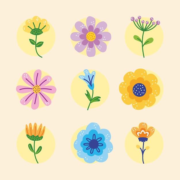 Frühlingssaison blumen neun satz