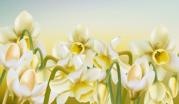 Frühlingswiese der narzissenblumen im aquarellstil