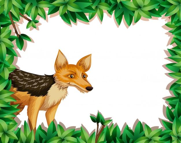 Fuchs im dschungel
