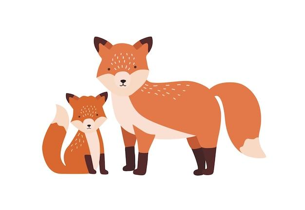 Fuchs mit jungtier oder welpe isoliert. familie der lustigen wilden fleischfressenden waldtiere. eltern mit jungen, mutter und baby oder nachkommen