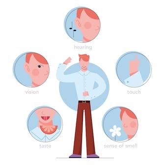 Fünf arten des menschlichen sinnes. sehen durch das auge, riechen mit der nase, schmecken mit der zunge. sinneswahrnehmung durch handberührung. illustration