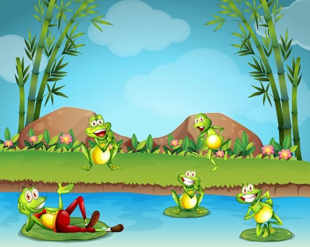 Fünf frösche, die am teich leben