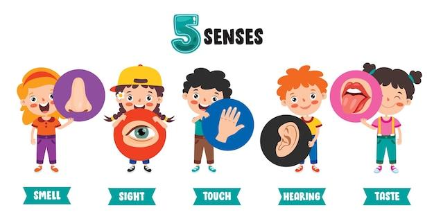 Fünf-sinne-vorlage mit kindern, die menschliche organe halten